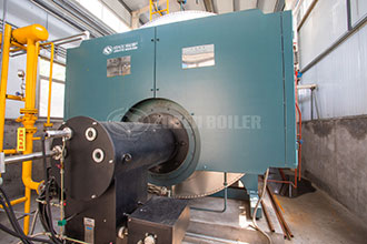 best dealer price oil gas steam boiler