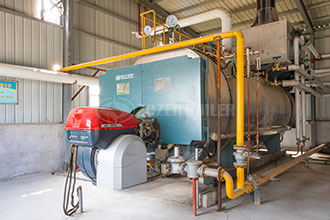 commercial 4t natural gas steam boiler price vietnam