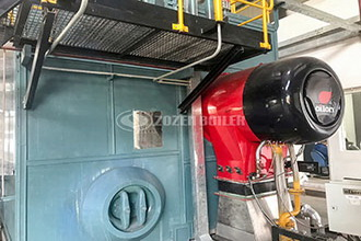 commercial hot selling 6t biomass fired boiler thailand