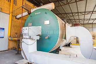 lpg-gas-fired-boiler-manufacturer | <a href=