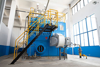 industrial 8t gas steam boiler supplier singapore