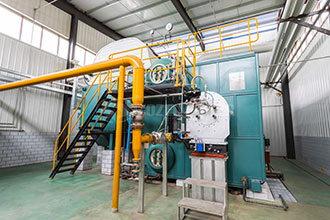 1t natural gas fired boiler hot selling vietnam coal fired