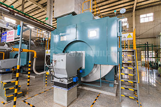 supplier 4t gas boiler industrial vietnam