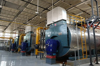 industrial 6t natural gas steam boiler price armenia